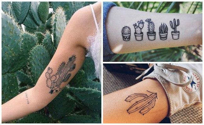 Fotos de tatuajes de cactus