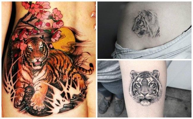 Tatuajes de tigres en el hombro