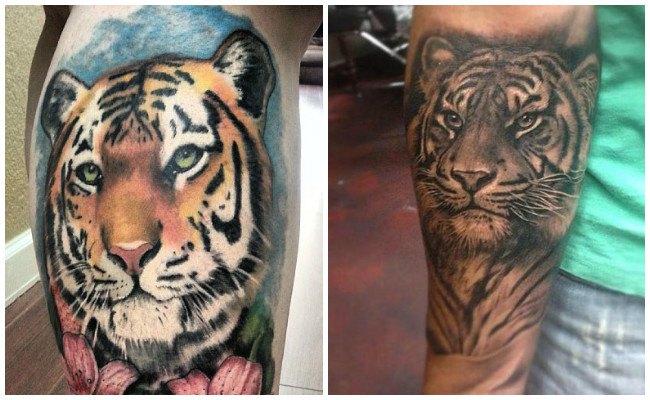 Tatuajes de tigres a color