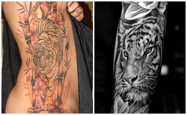 Tigres para tatuajes